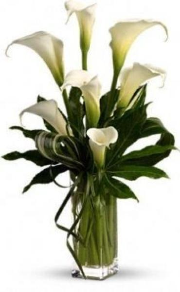 A DRAMATIC CALLA LILY BOUQUET