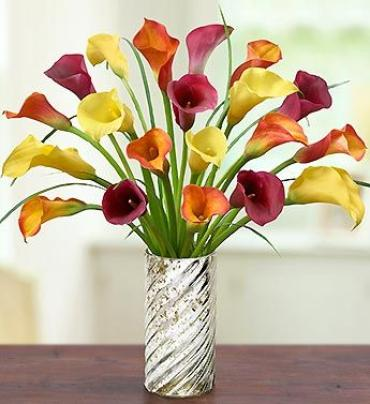 Mini Calla Lilly Elegant Bouquet