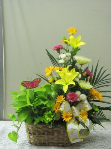 Green Plant and Floral Basket