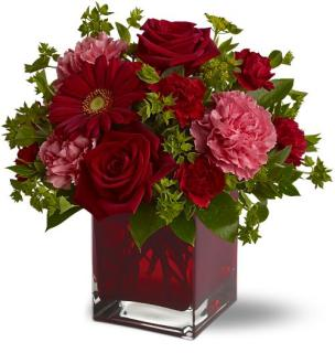 Romancing With Red Roses