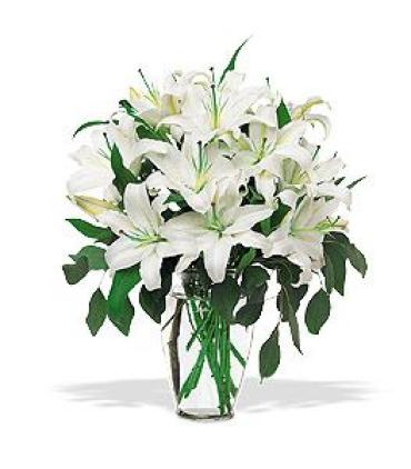 LILIES IN WHITE