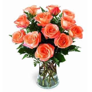1 DOZEN ORANGE ROSES ARRANGED