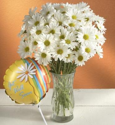 "Daisy Bouquet to say ""Get Well\"""