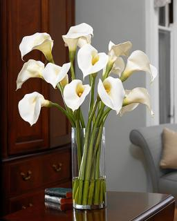 CALLA LILY 12 STEM BOUQUET