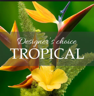DESIGNERS CHOICE TROPICAL FLOWERS