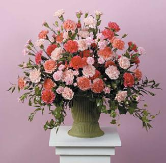 Pink and Peach Carnation Urn