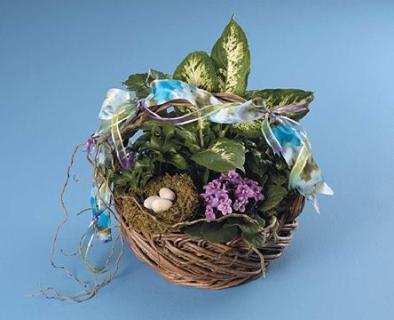 Basket Garden with Bird Nest Accent