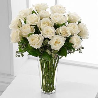 EIGHTEEN WHITE ROSES