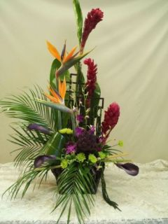 TROPICAL SURPRISE WITH BIRDS OF PARADISE