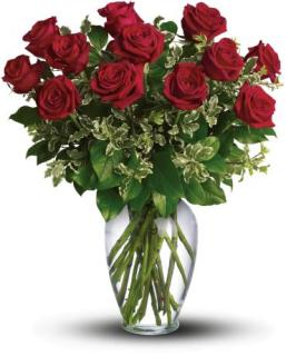 CRAZY TIMES SPECIAL! FANCIES 1 DOZEN RED ROSES ARRANGED