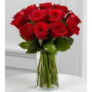 12 RED ROSES SIMPLE AND ELEGANT