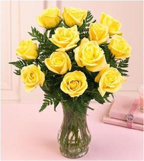 1 DOZEN YELLOW ROSE BOUQUET