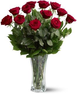 A Dozen LONG STEM Premium Red Roses