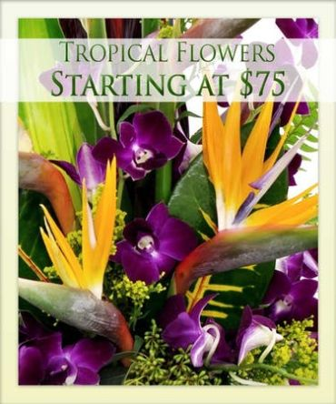 TROPICAL FLOWER ARRANGEMENTS MADE FOR YOU