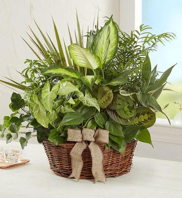 GARDEN LOVE BASKET PLANTER