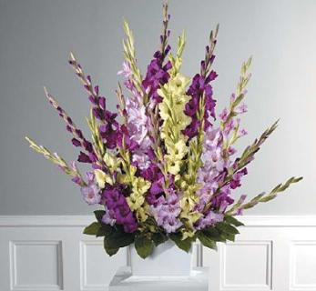 Tranditional Gladiolus Fan Spray
