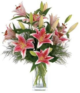 Stargazer Bouquet ON SALE NOW!