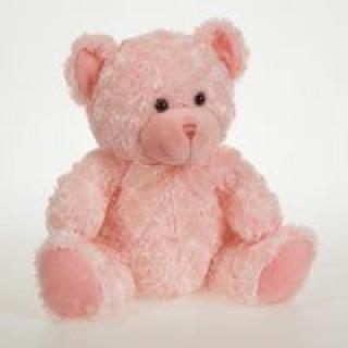 """Pinky\"" The Bear"